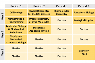 MBLS curriculum overview
