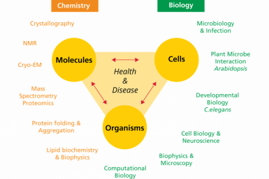MCLS - the molecular and cellular life sciences philosophy
