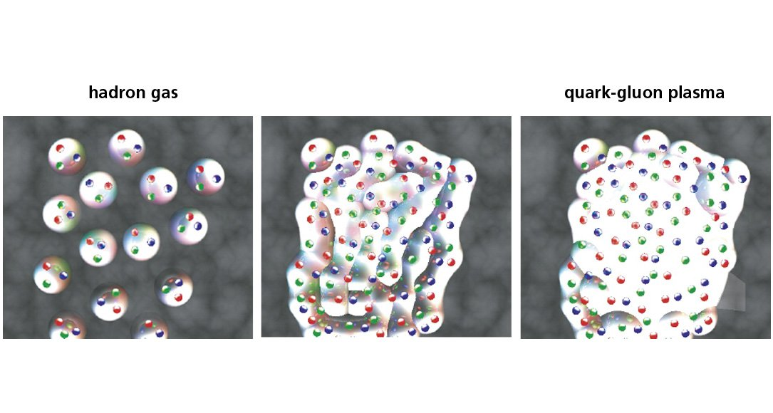 Beta Quark-Gluon Plasma
