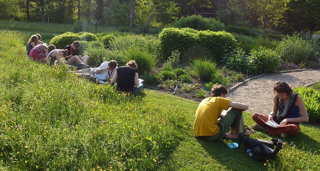 Studenten aan het werk in de Botanische Tuinen