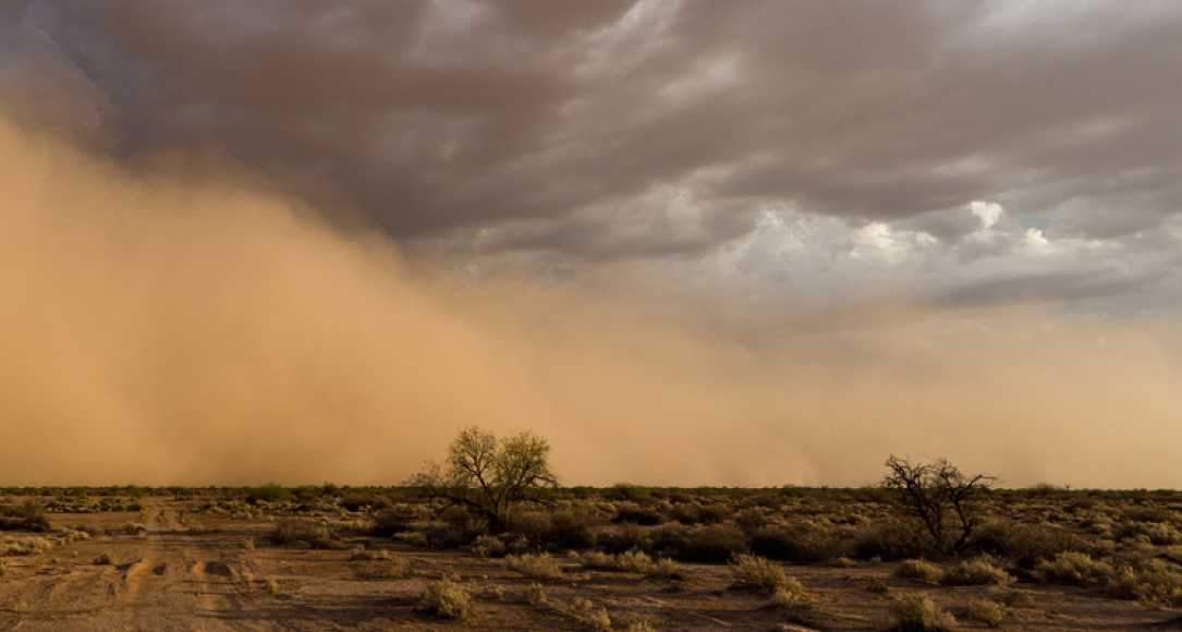 Stofstorm ontmoet dreigende wolken in woestijn van Arizona