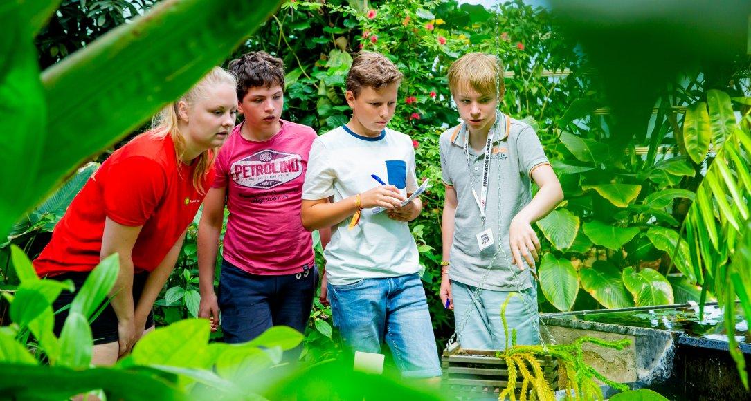 Summerschool Junior 2018 Biomimicry