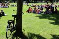 Een geparkeerde fiets en studenten die in het Wilhelminapark lunchen tijdens de UIT.