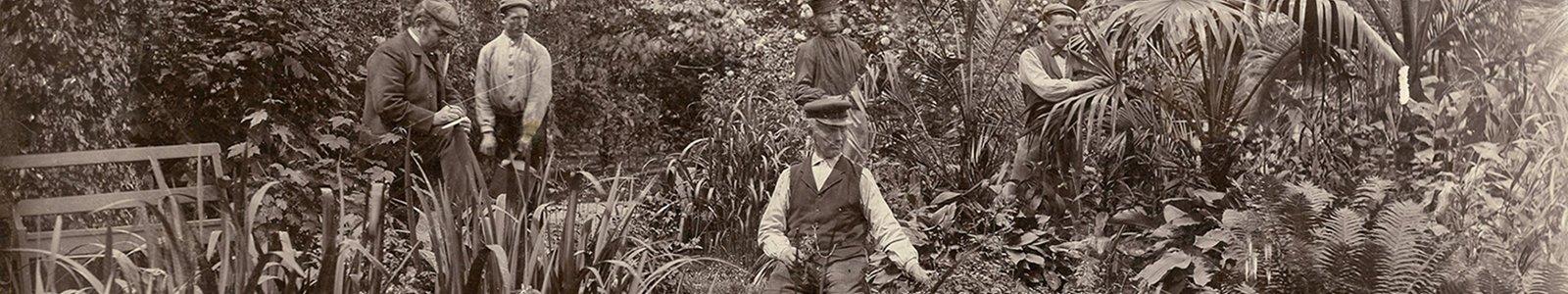 tuinmannen rond 1910 in hortus Nieuwegracht