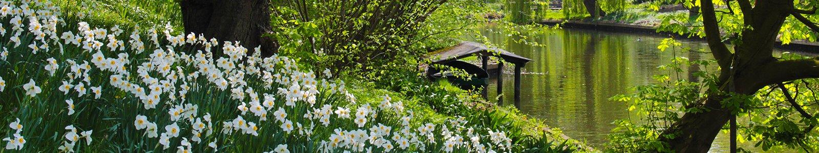 Voorjaar in de Botanische Tuinen
