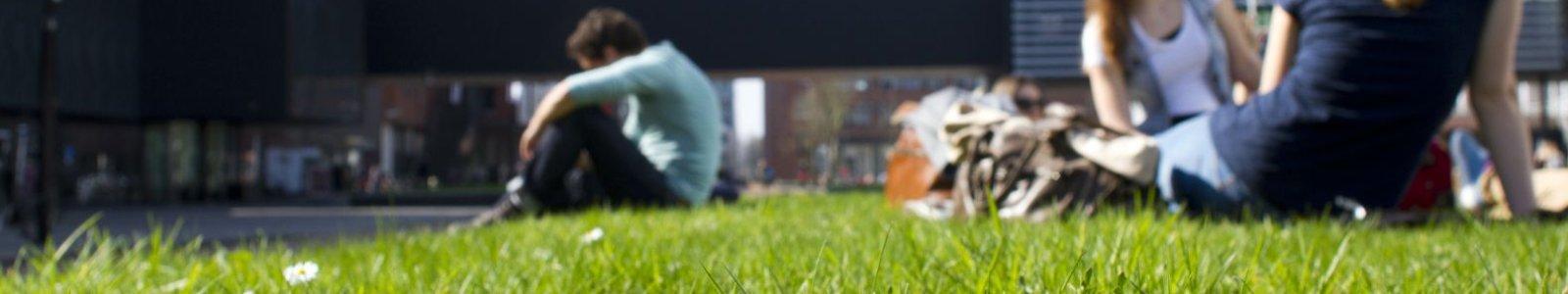 grasveld voor de Universiteitsbibliotheek Uithof