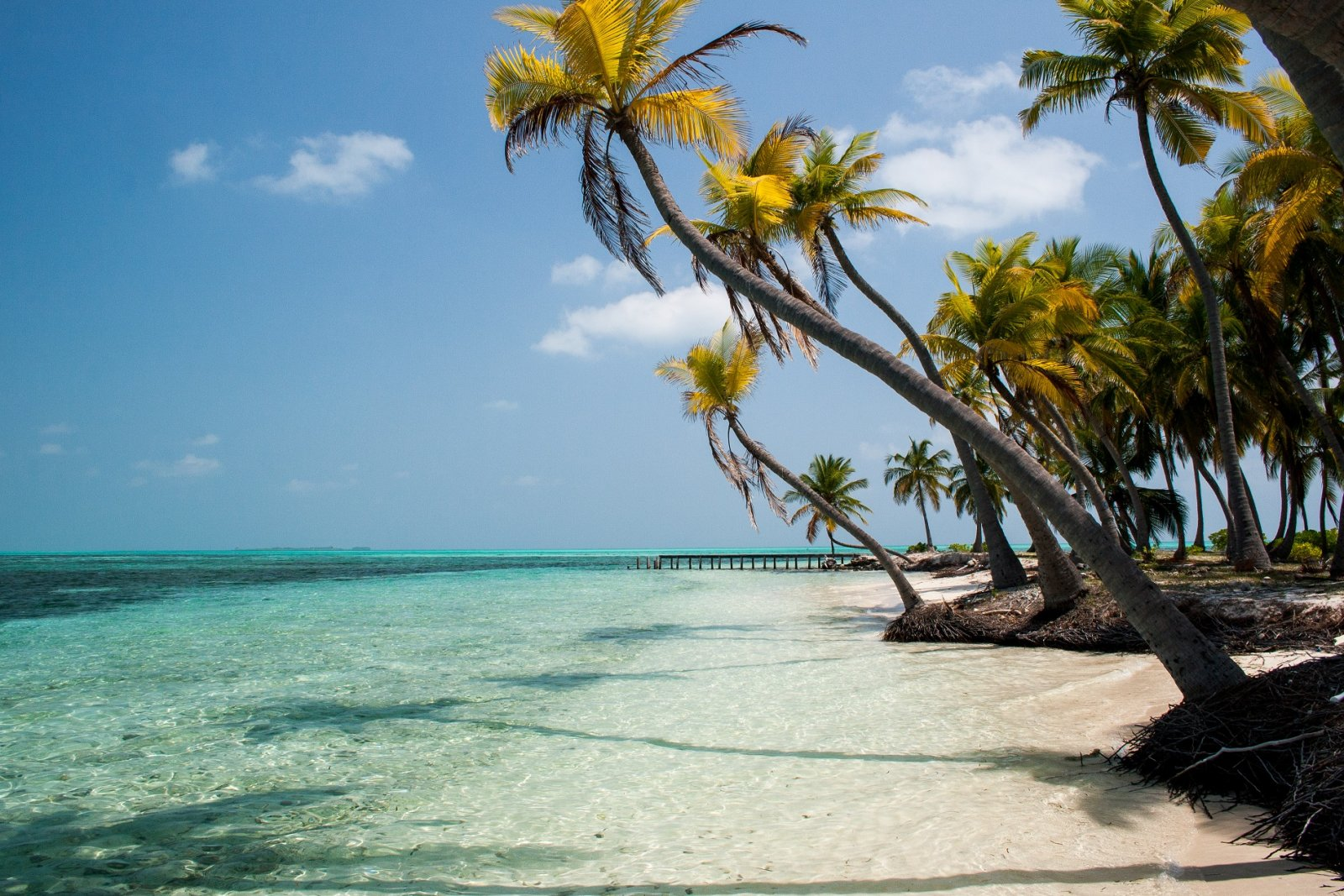 tropical beach frieling persbericht