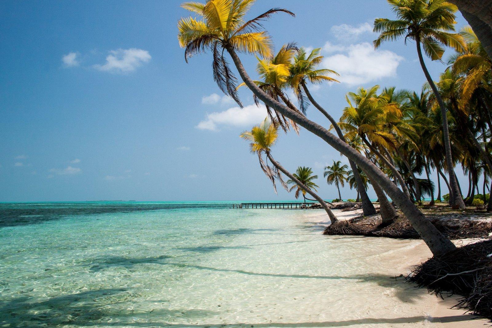 tropical beach frieling persbericht