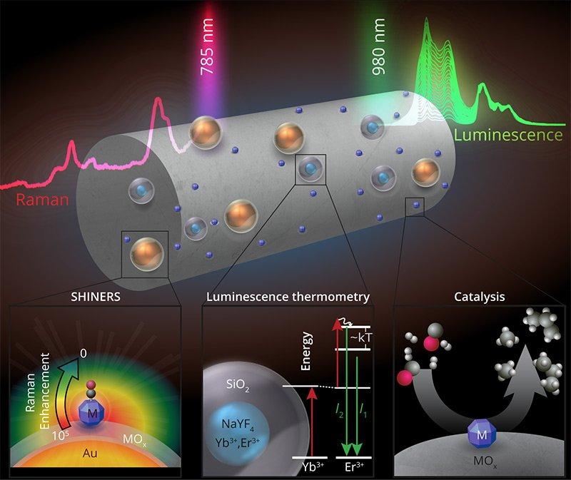 Figure nanosensor for catalytic reactions