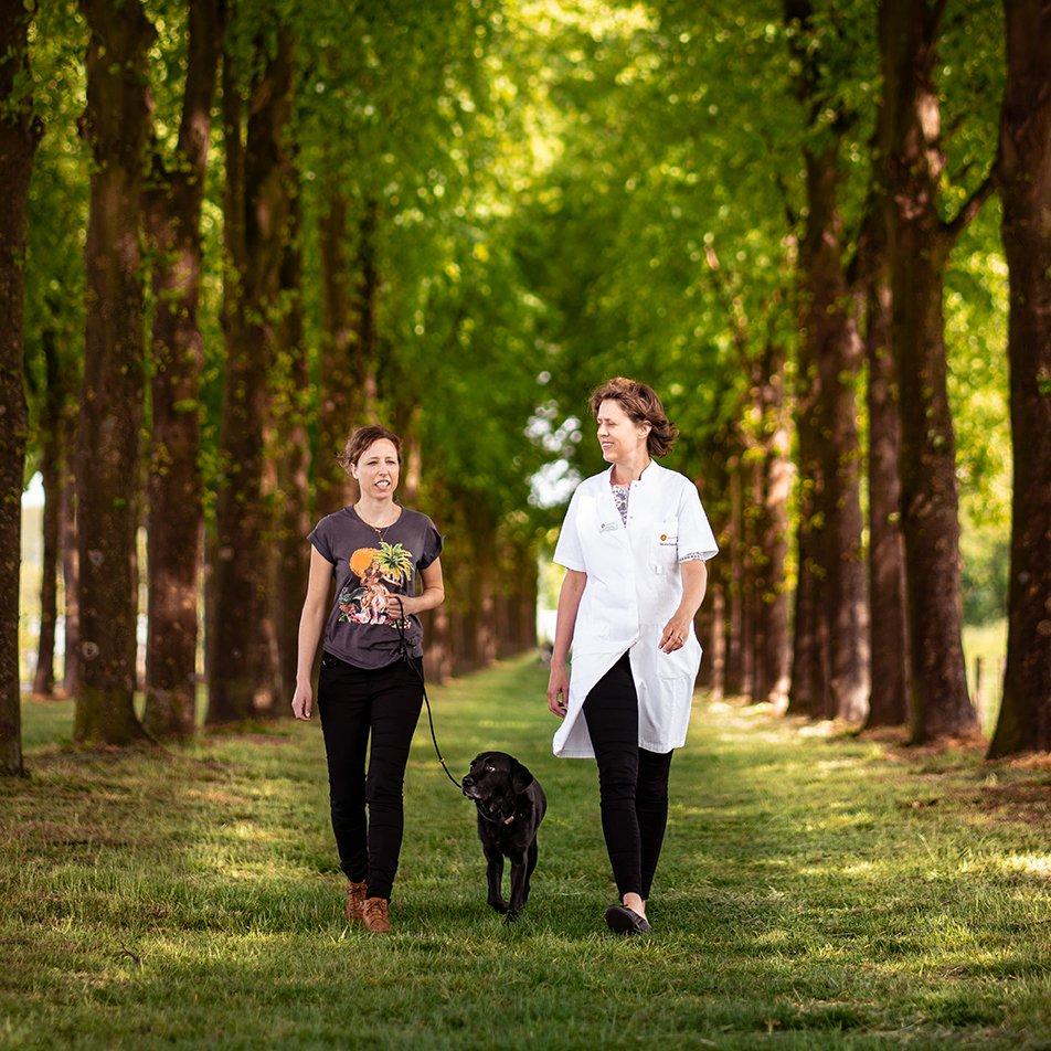Specialist tandheelkunde Henriette Booij-Vrieling loopt met twee patienten, een hond en de eigenaar van de hond, door een bomenlaan.