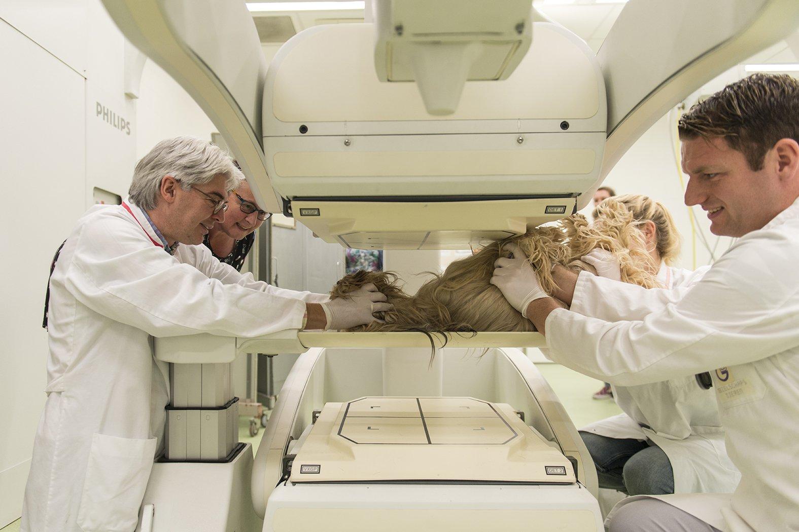 Hans Kooistra (links in beeld) behandelt een patiënt met schildklierproblemen