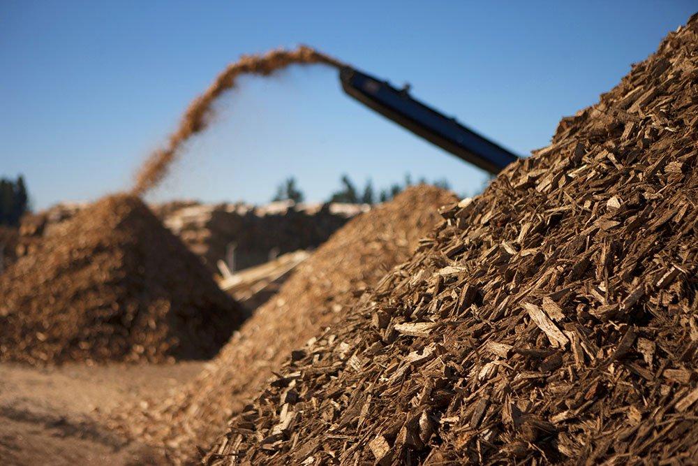 Negatieve emissies leiden tot veel landgebruik