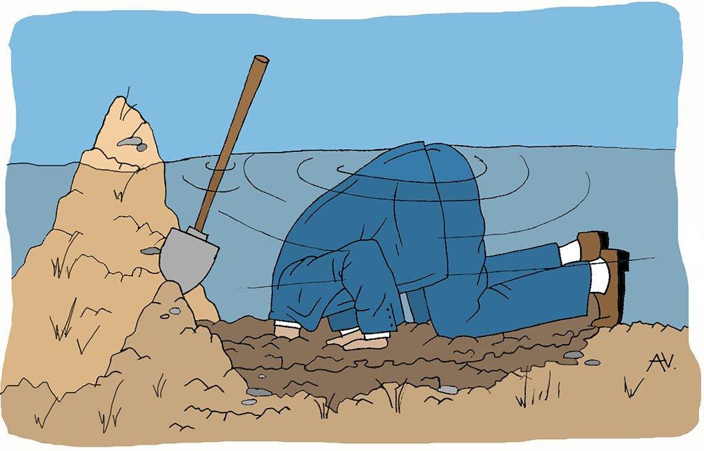 Kop in het zand. Beeld: Aike Vonk