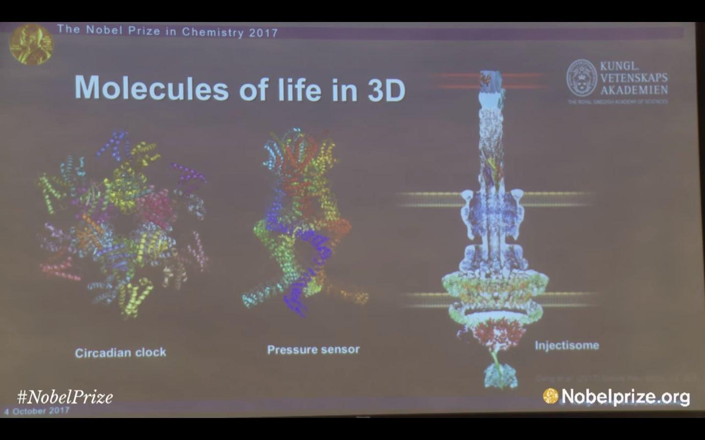 Nobelprijs Scheikunde - biologische klok Heck et all