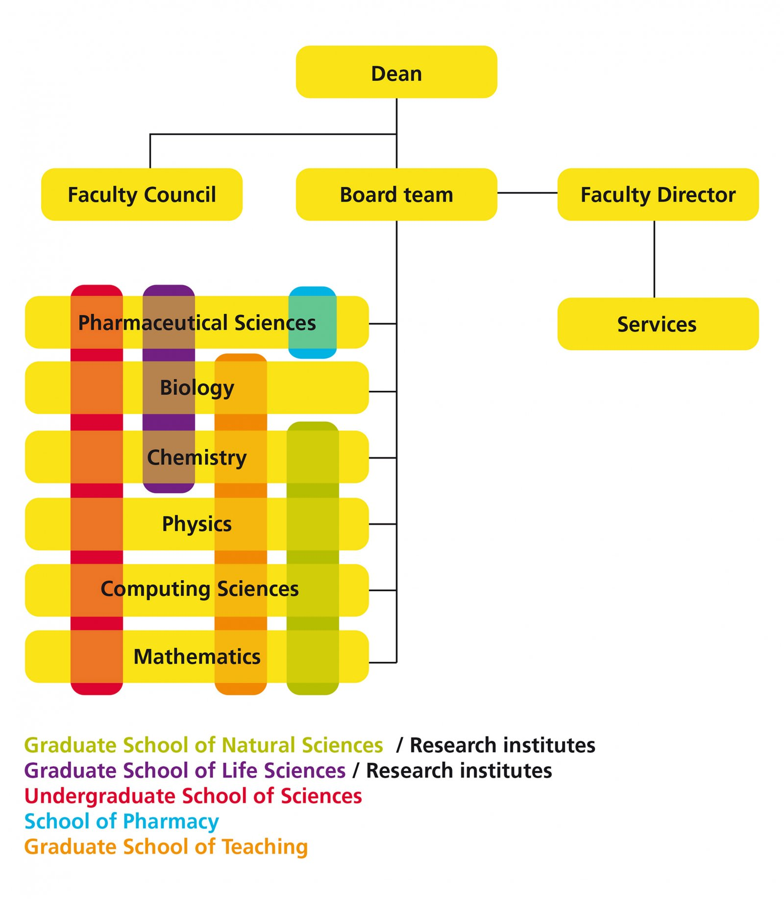Organisation chart Faculty of Science