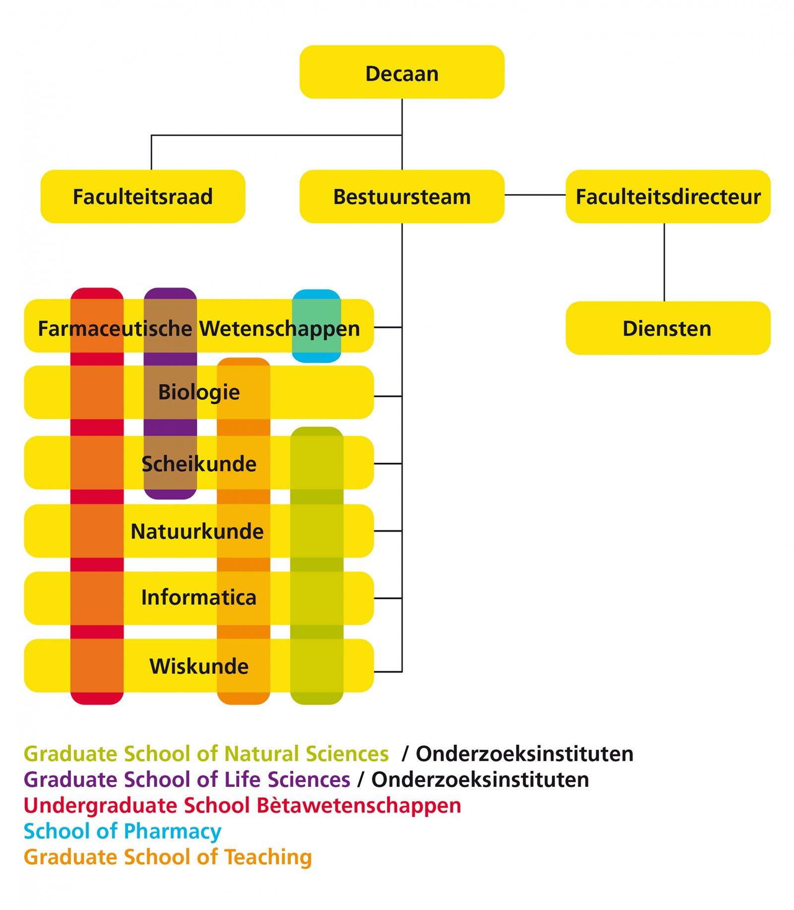 Organogram faculteit Bètawetenschappen