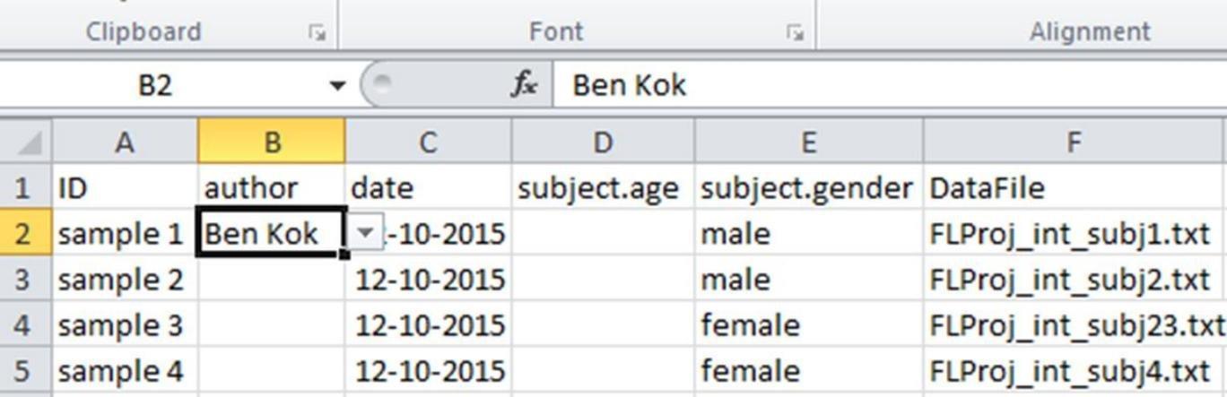 Example metadata sheet in Excel.