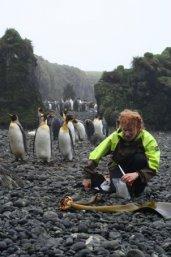 Dr. Fraser verzamelt zeewier op het sub-antarctische Marion Island. (foto: Genevieve Jones)