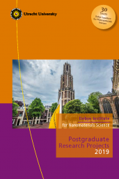 DINS Postgraduate Research Projects 2019_front