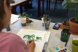 Parnassos Botanisch illustreren