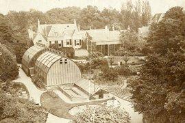 Overzicht hortus aan de Lange Nieuwestraat begin 20e eeuw