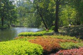 Vroeg in de zomer komen de Astilbes in de Systeemtuin boven de grond en heb je een prachtig uitzicht over de fortgracht