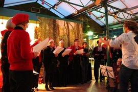 Ons vrijwilligerskoor treedt op tijdens de traditionele kerstviering met staf en vrijwilligers