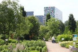 uitgelicht4, organisatie, botanische tuinen
