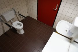 The accessible toilet at Androclus