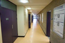 The hallway in the Leonard S. Ornstein Laboratory
