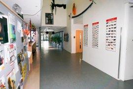 The hallway on the ground floor of the Martinus G. de Bruin building at Yalelaan 9