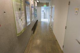 One of the corridors in the Nicolaas Bloembergen building