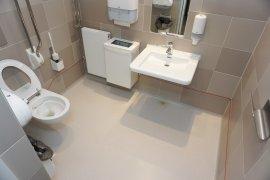 The accessible toilet at Parnassos Cultuurcentrum