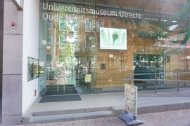 View of the main entrance of the University Museum