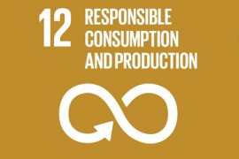 Sustainable Development Goal 12 - Responsible consumption and production