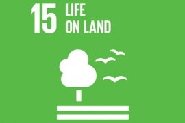 Sustainable Development Goal 15 - Life on land