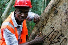 Greening value chains © Hartmut Jungius / WWF
