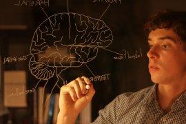 Student tekent brein