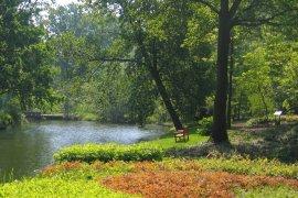 Walking route Botanic Gardens