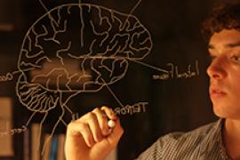 Student maakt schematische tekening van een brein.