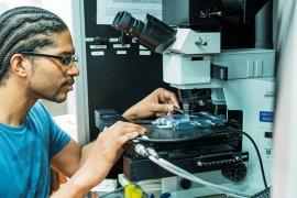 Onderzoekster bekijkt petrischaaltje