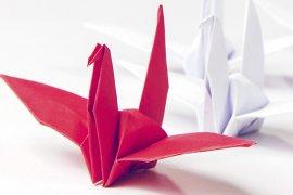 Rode papieren zwaan leidt een groep witte zwanen