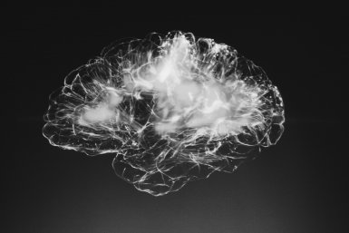 Zwart-wit foto van hersenen