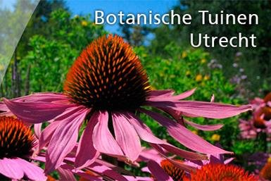 Alumni-botanischetuinenutrecht_385x257