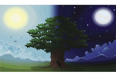day-night tree