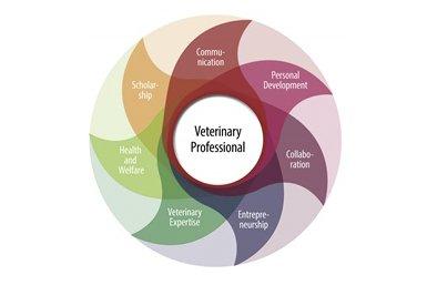 Competentieprofiel voor dierenartsen