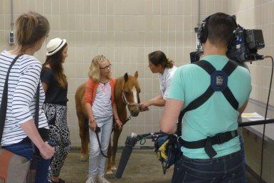 Maartje en Hanneke kijken naar de ogen van het paard
