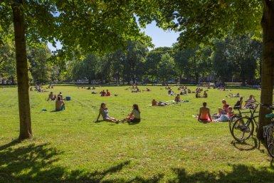 Jongeren in het Wilhelminapark