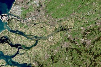 Rhine Meuse Delta  (USGS/NASA Landsat)