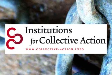 Institutions for Collective Action